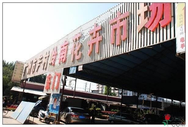 广州岭南花卉批发市场