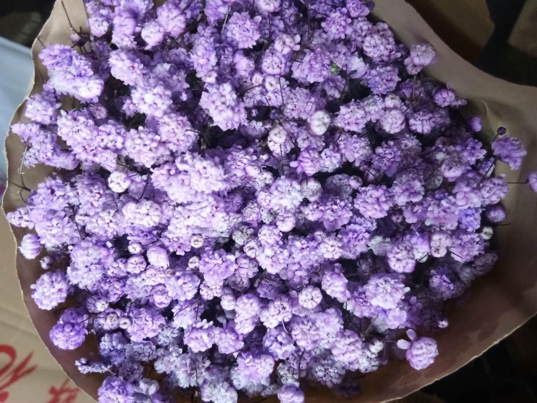 吸色浅紫千万星