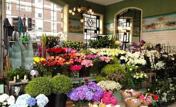 漂亮的花店
