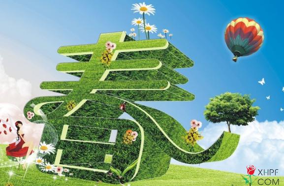 春季盆栽养护
